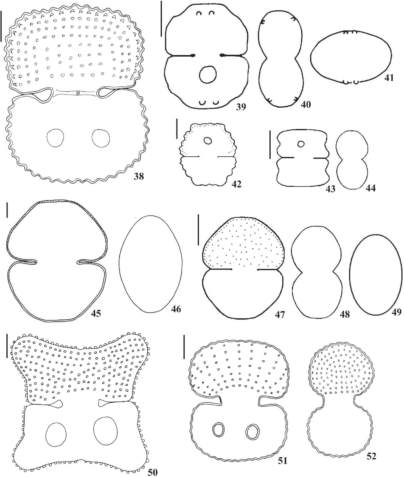 figure 38-52