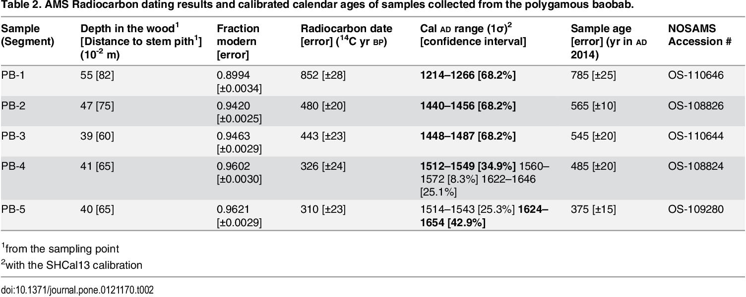Radiocarbon dating vs AMS