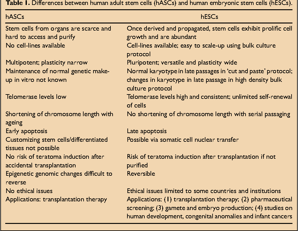 stem cell research paper pdf