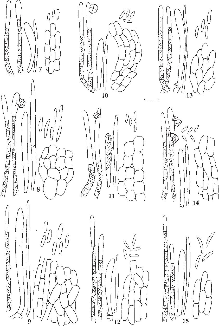 figure 7–15