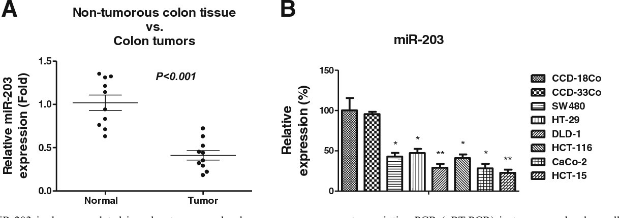 Figure 1 From Overexpression Of Mir 203 Sensitizes Paclitaxel Taxol Resistant Colorectal Cancer Cells Through Targeting The Salt Inducible Kinase 2 Sik2 Semantic Scholar