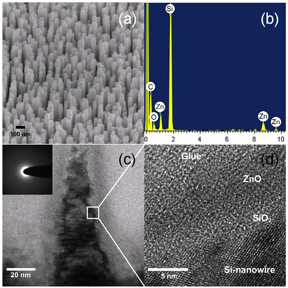 Figure 3. The structural and compositional analyses of the (3.5 nm) ZnO/Si-nanowire heterostructure. (a) The SEM image; (b) the EDS analysis; (c) the TEM image; and (d) the HRTEM. Notice that the entire layer of the ZnO film is essentially amorphous.