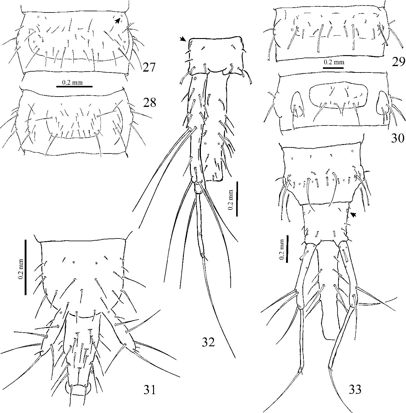 figure 27–33