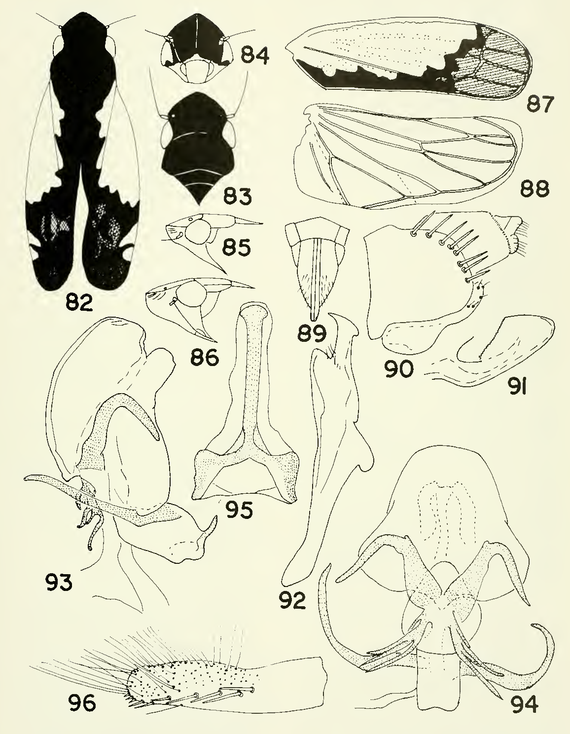 figure 82-96
