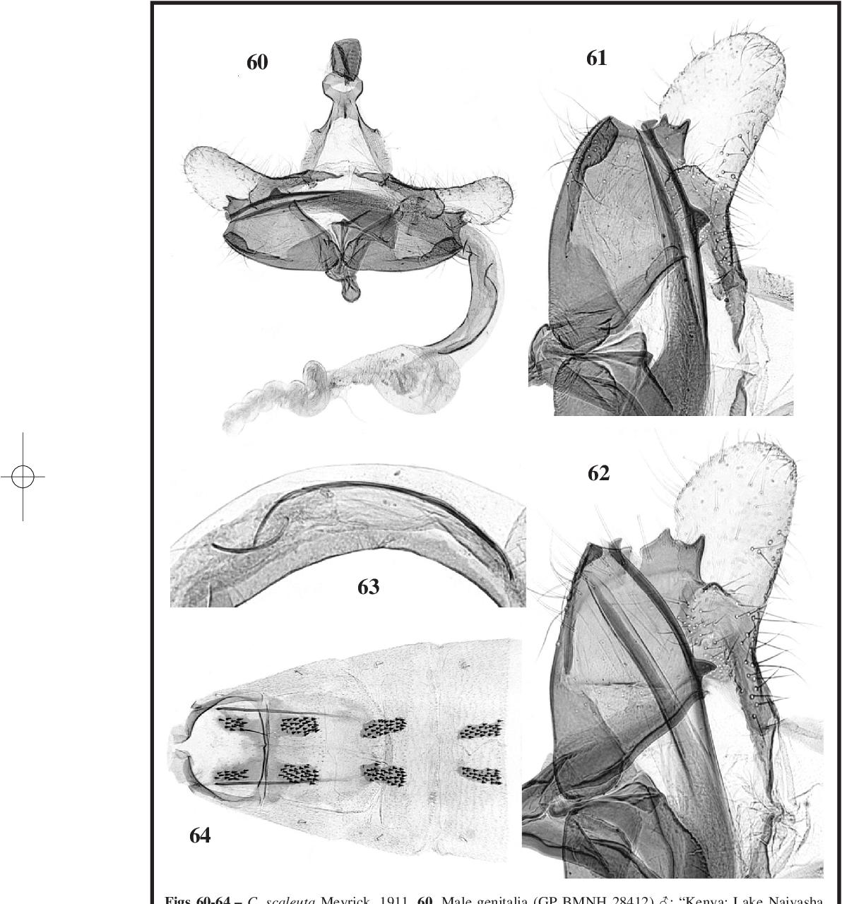 figure 60-64
