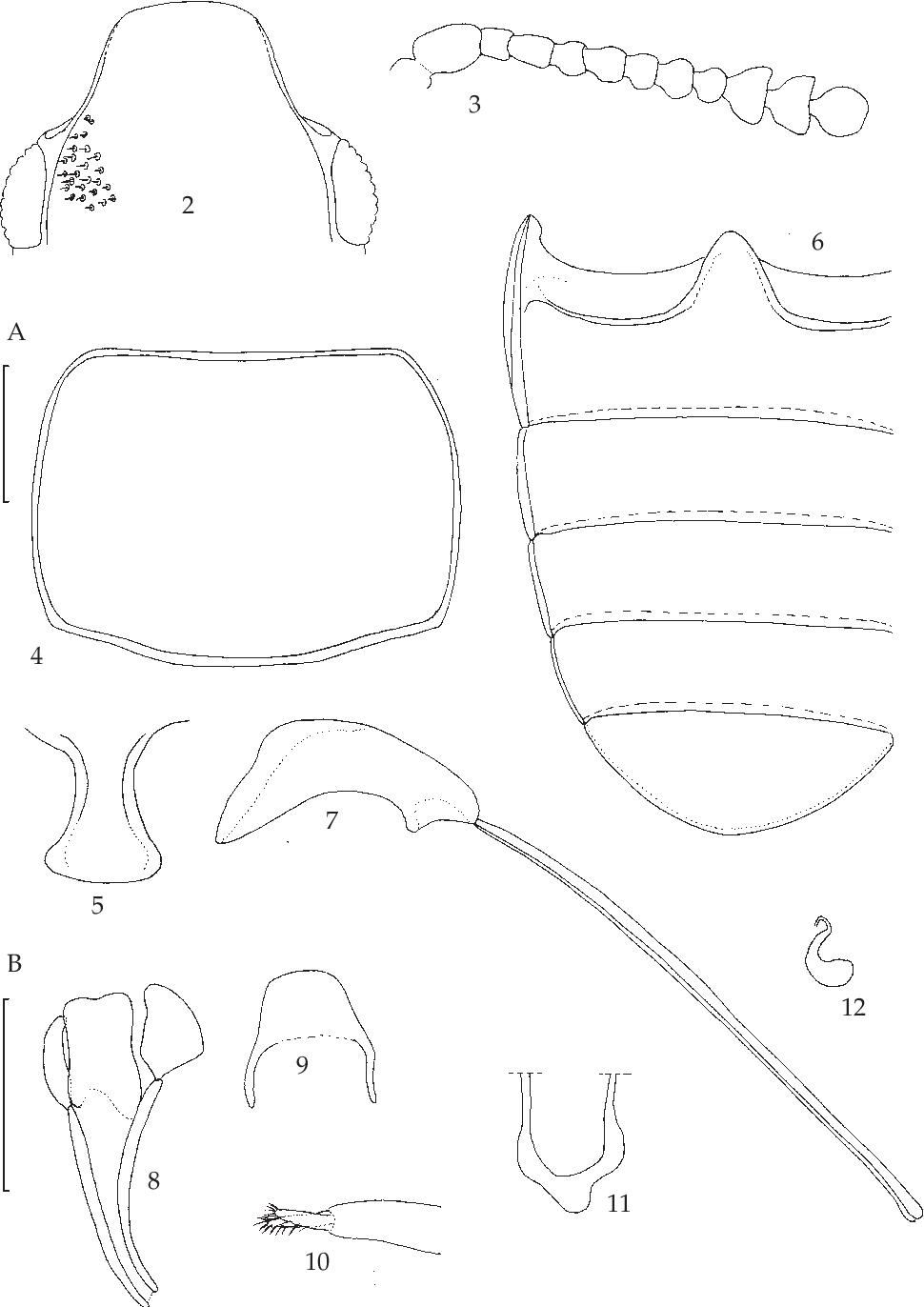 figure 2-12