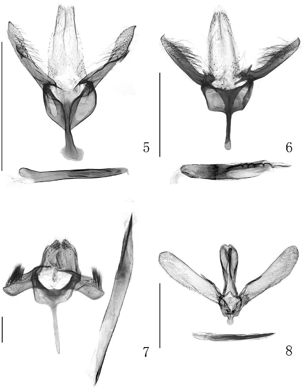 figure 5–8
