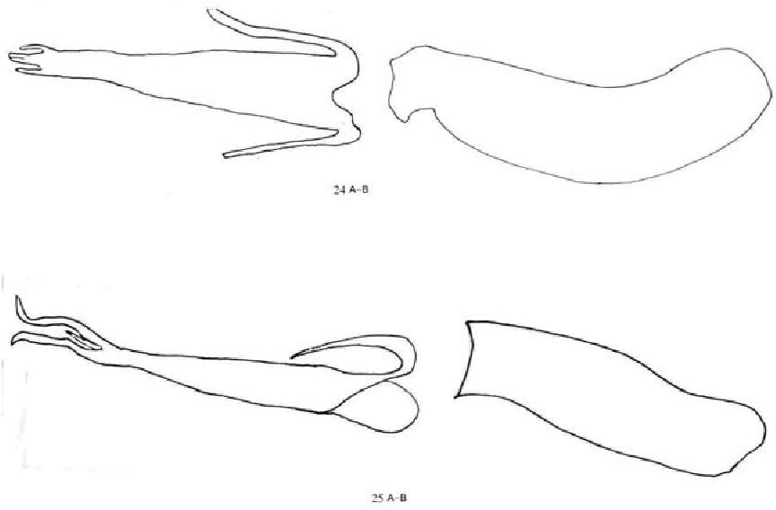 figure 24-25