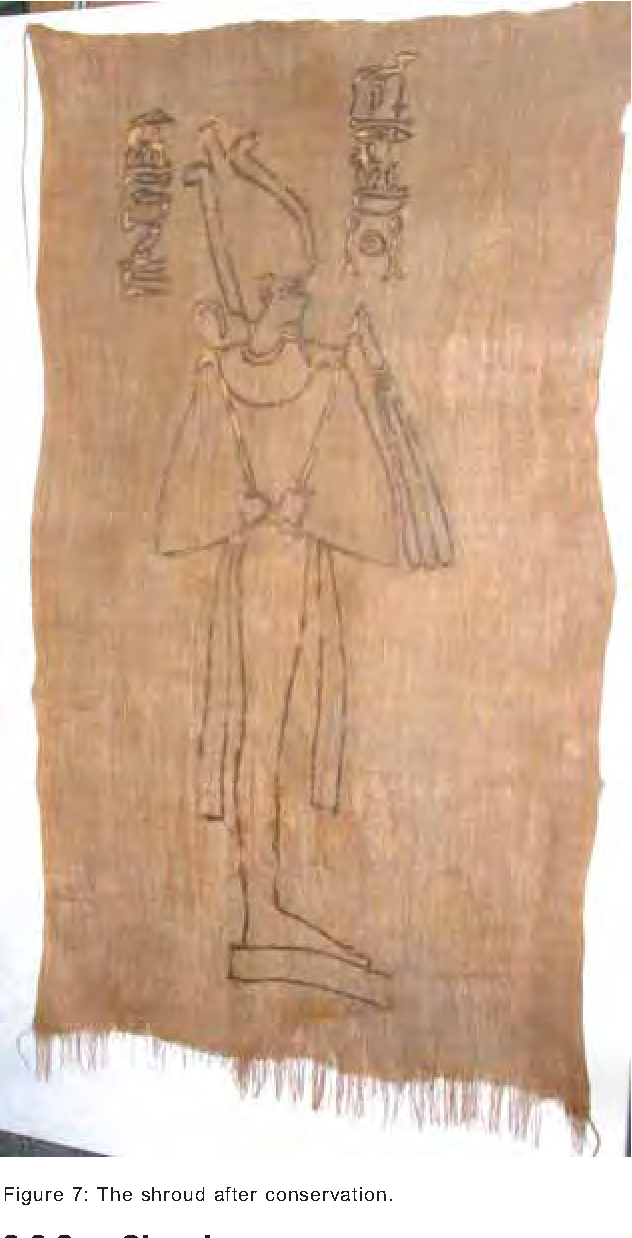 Figure 7 from CONSERVATION OF A RARE PAINTED ANCIENT