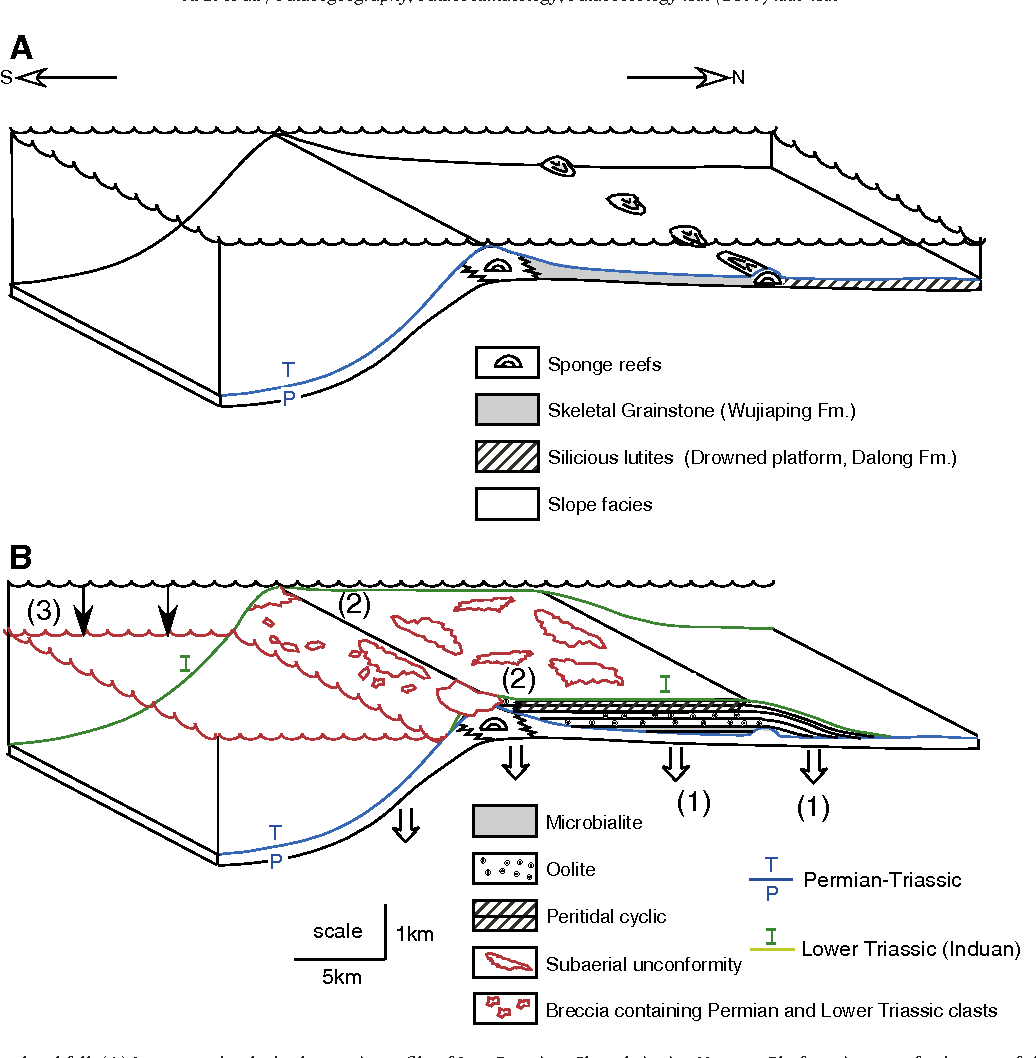 Triassic evolution of the Yangtze platform in Guizhou Province, Peoples Republic of China