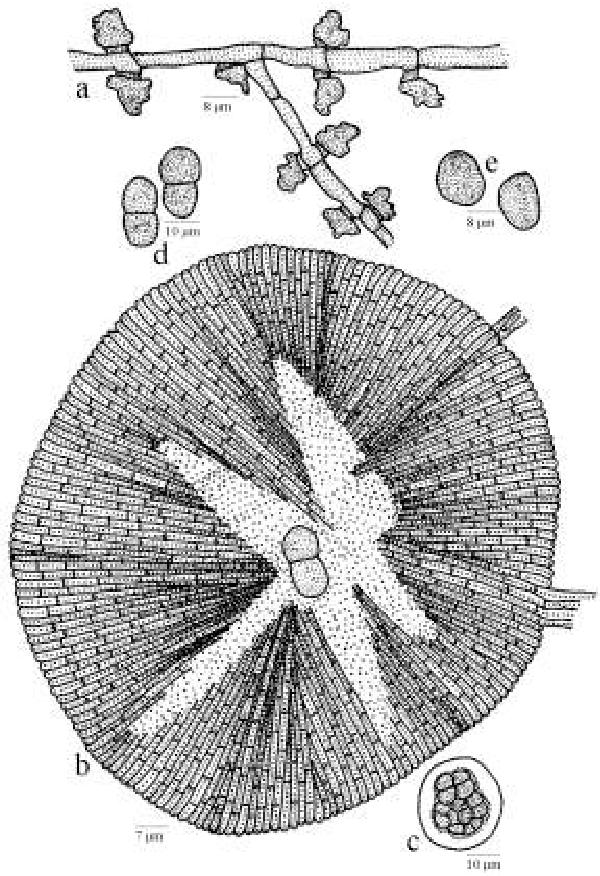 figure 198