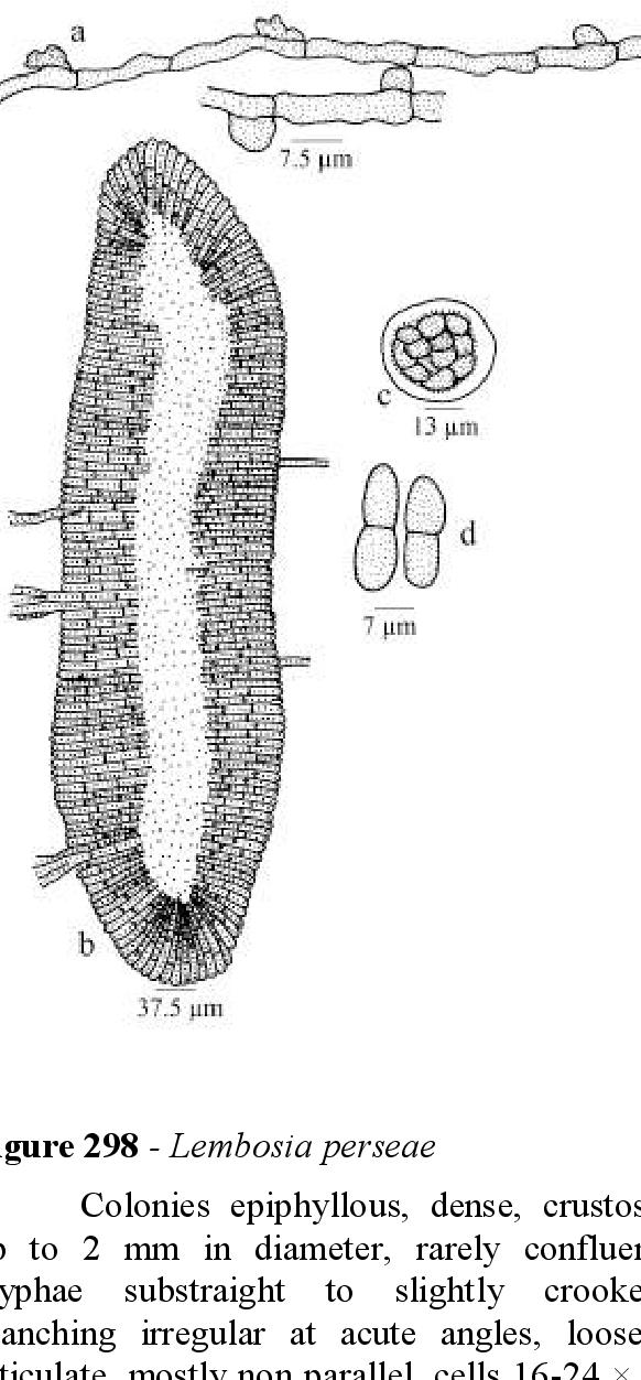 figure 298