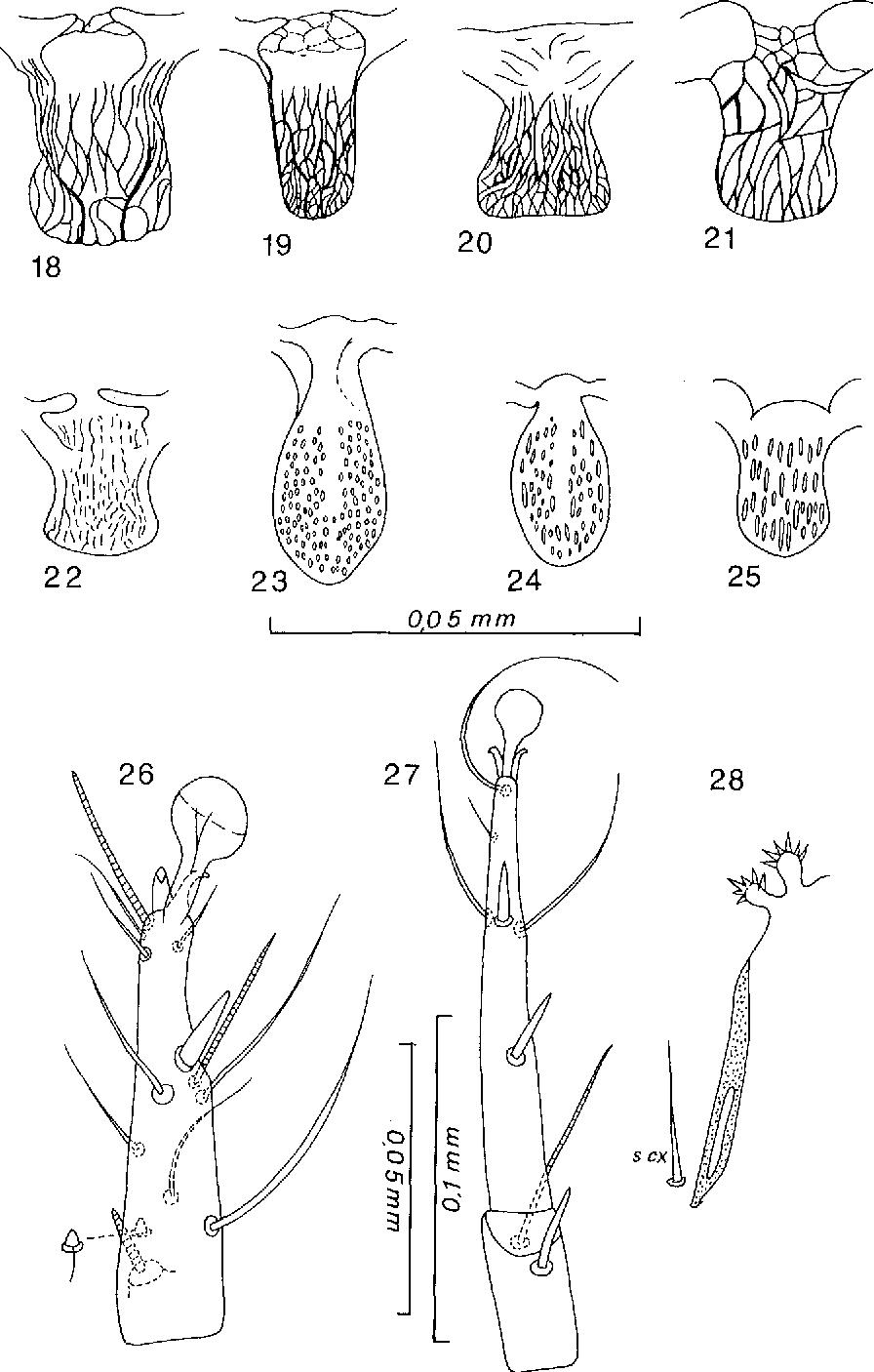 figure 18-28