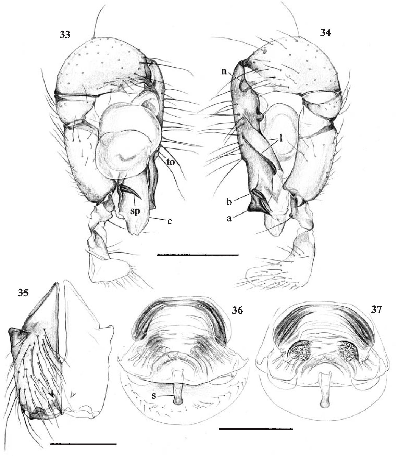 figure 33–37