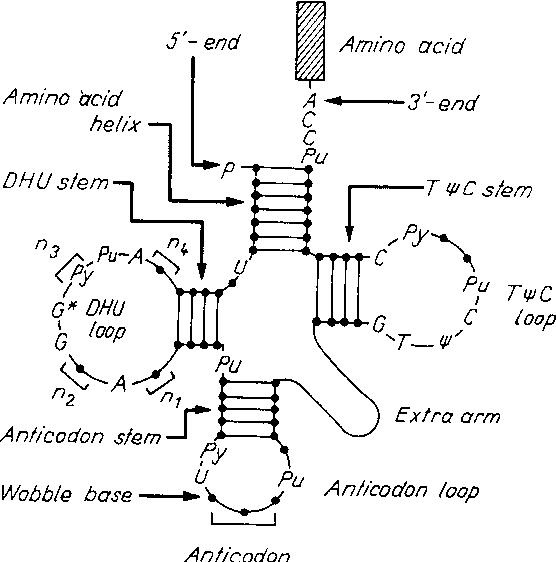 figure 94