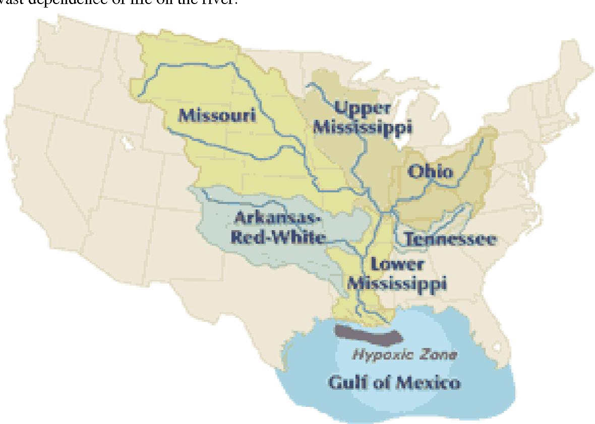 Picture of: Pdf Review Of Sedimentation Issues On The Mississippi River Report Semantic Scholar