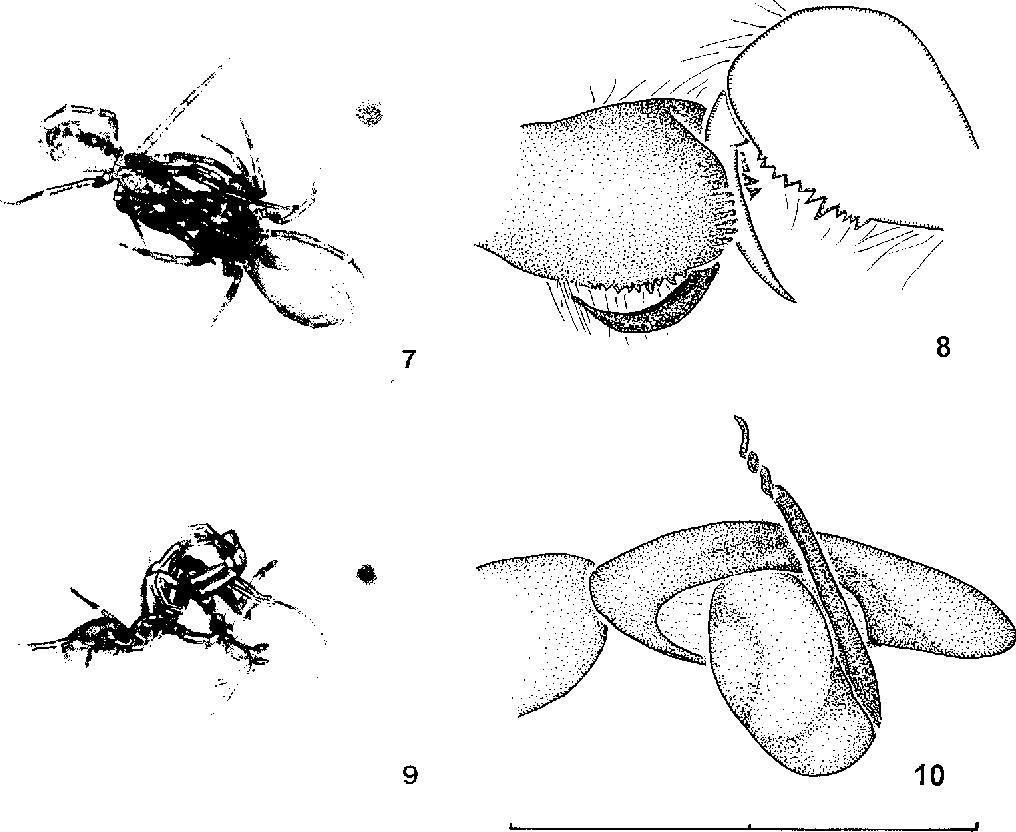 figure 7-10