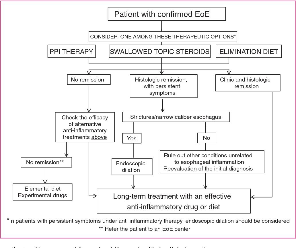 Guidelines On Eosinophilic Esophagitis Evidence Based