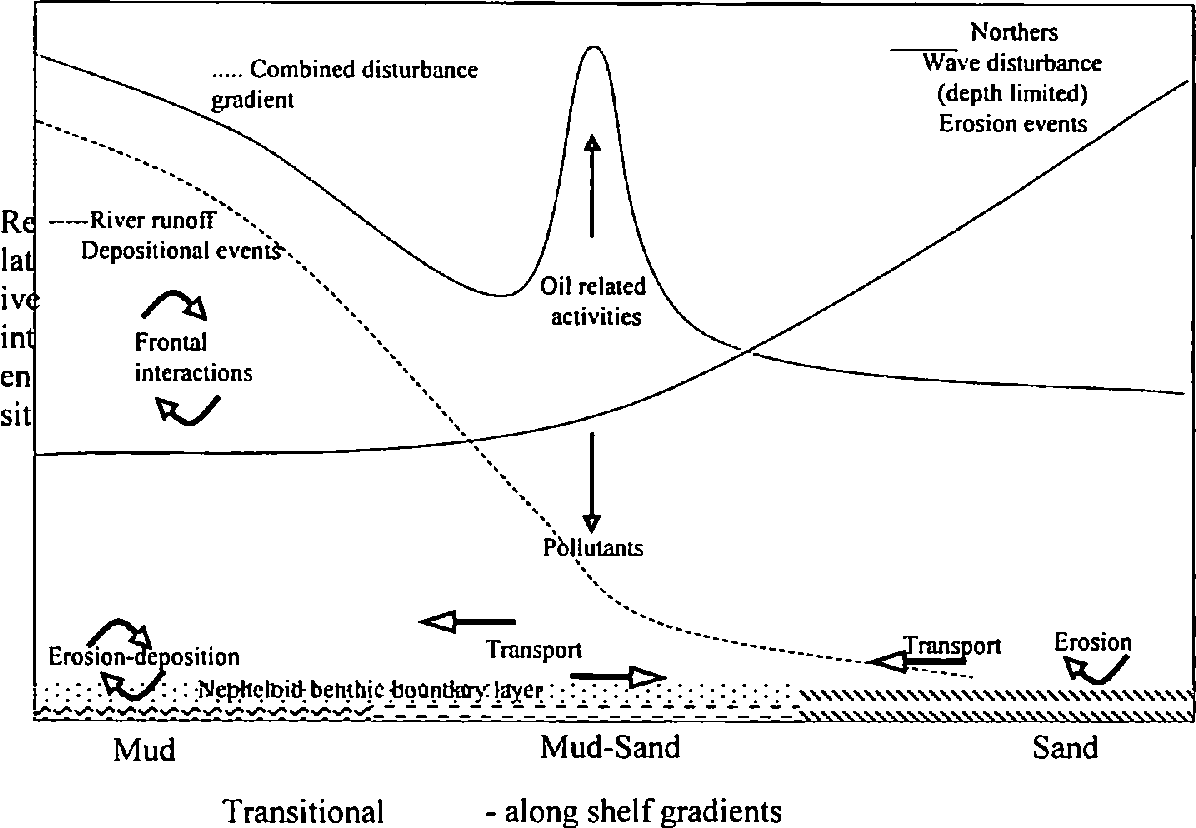 INFLUENCE OF NATURAL AND ANTHROPOGENIC DISTURBANCE ON THE SOFT ...
