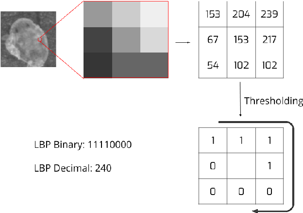 Figure 2 from Performance of haar and LBP features in
