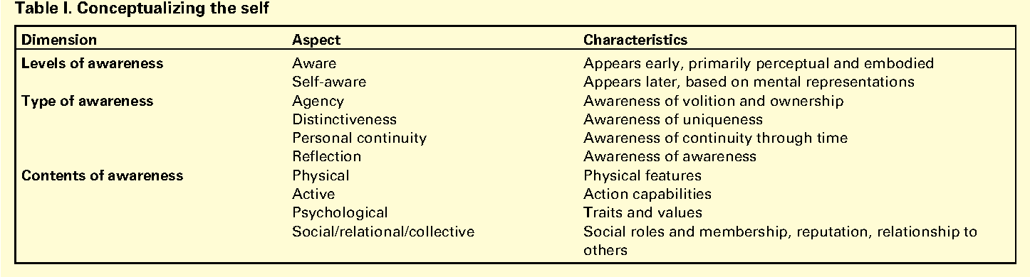 Shared representations between self and other: a social