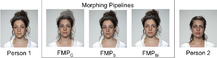 Reducing the False Alarm Rate for Face Morph Detection by a