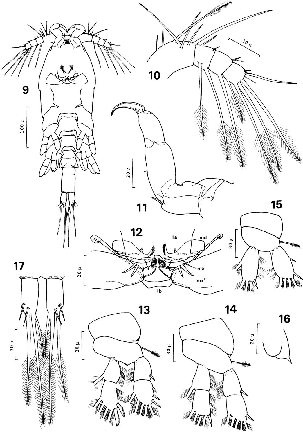 figure 9-17