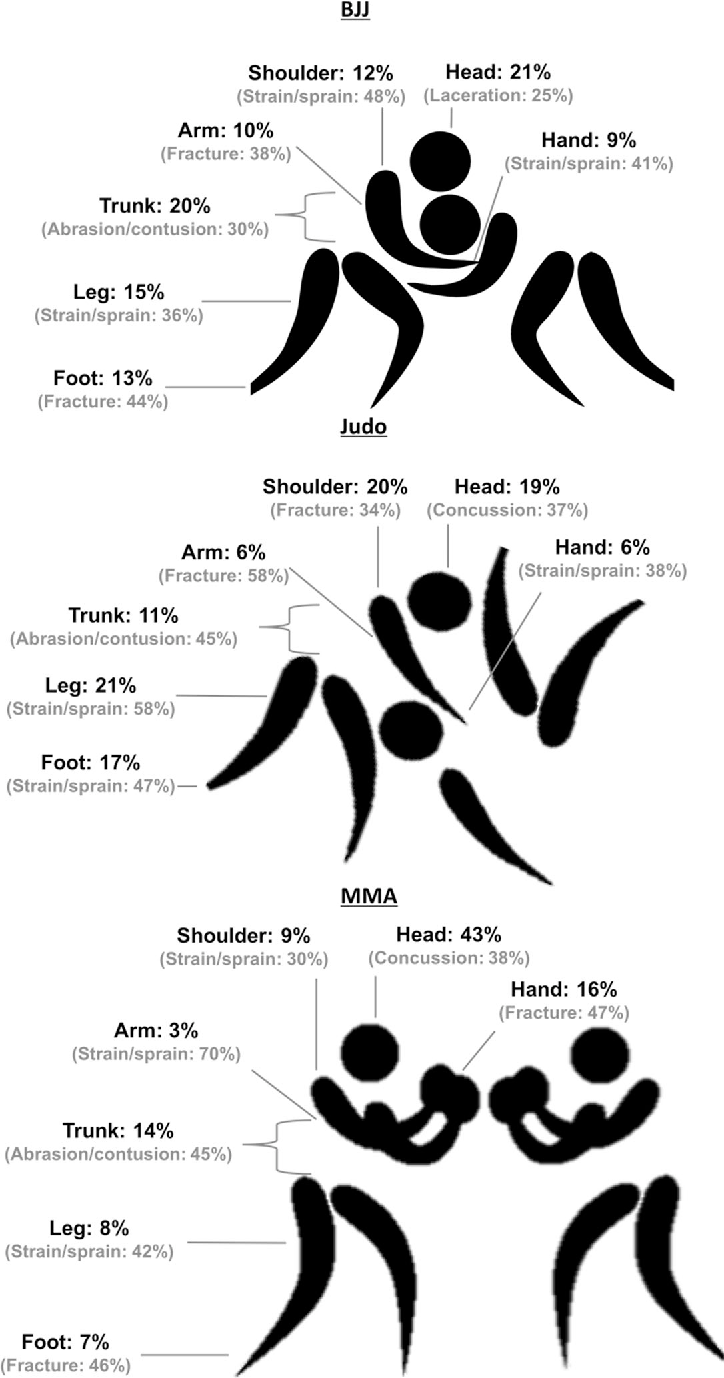 Figure 1 From Brazilian Jiu Jitsu Judo And Mixed Martial