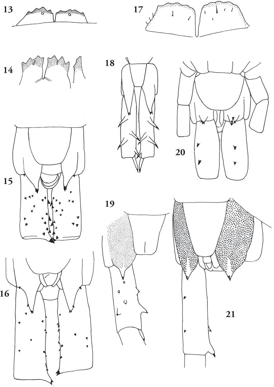 figure 13-21