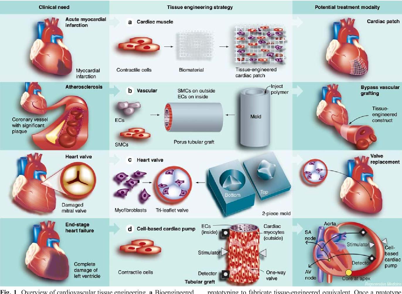 Cardiovascular Biomaterials