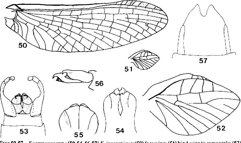 figure 50-57