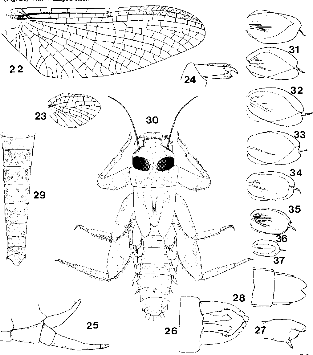 figure 22-37