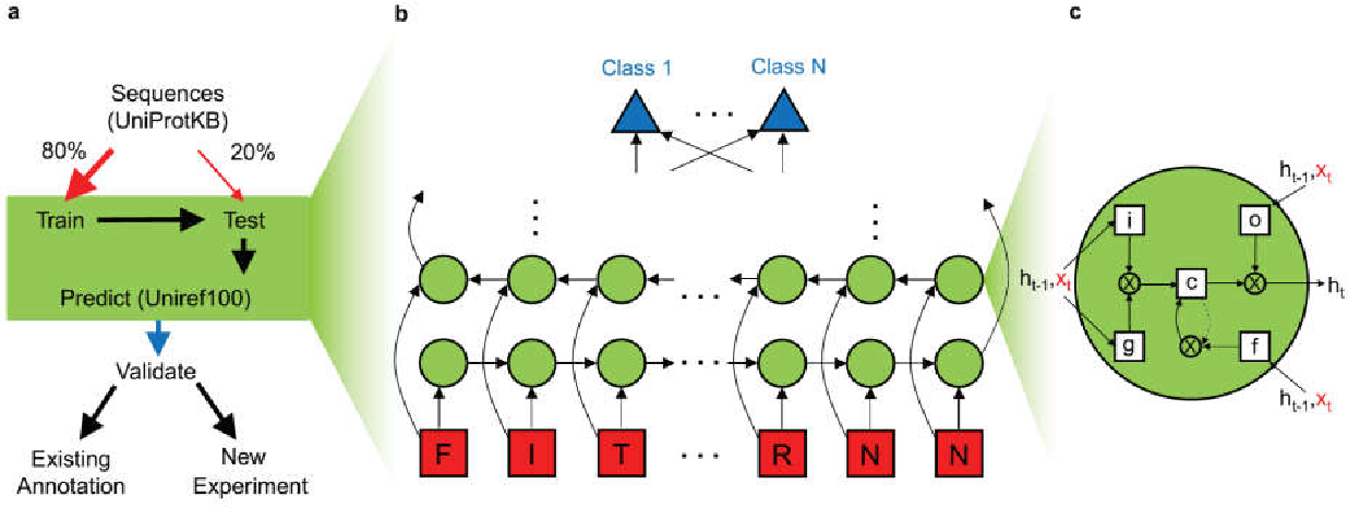 Figure 1 from Deep Recurrent Neural Network for Protein