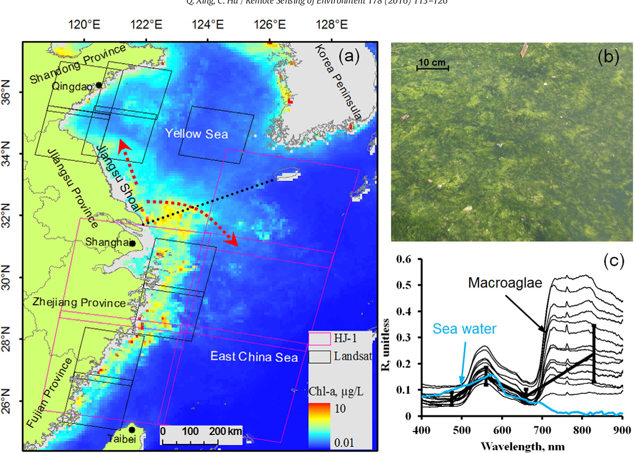 Pdf Mapping Macroalgal Blooms In The Yellow Sea And East China Sea Using Hj 1 And Landsat Data Application Of A Virtual Baseline Reflectance Height Technique Semantic Scholar
