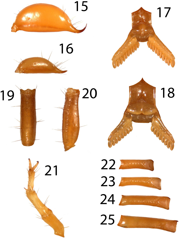 figure 15–25