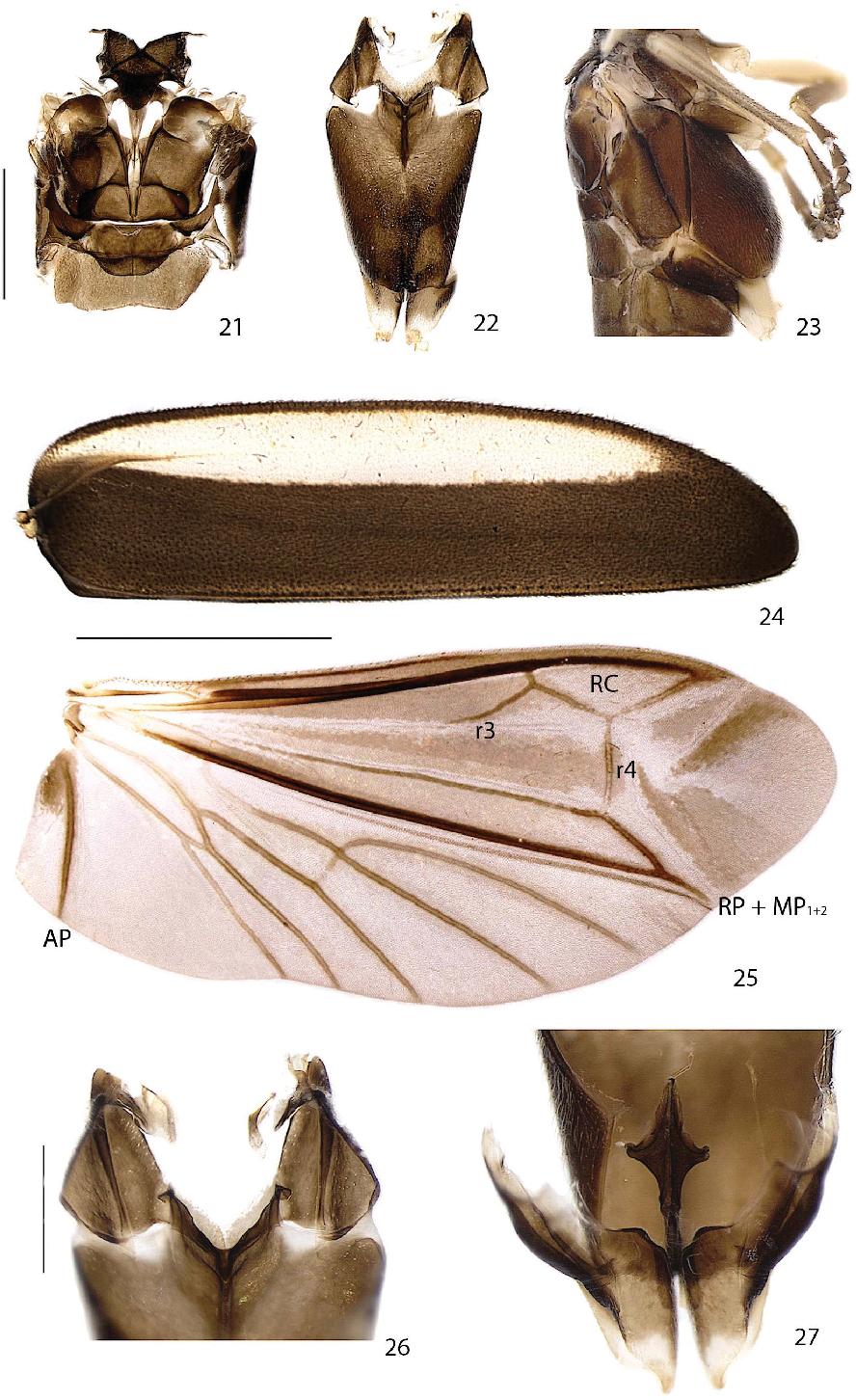 figure 21–27