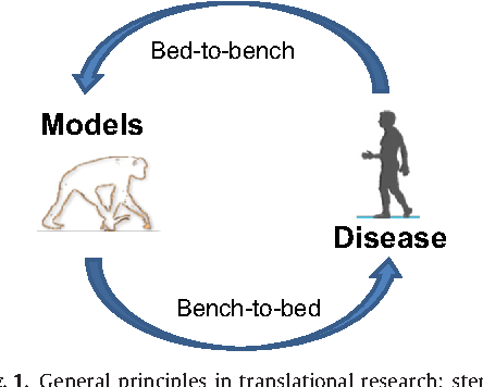 Cool Translational Research For Parkinsons Disease The Value Of Machost Co Dining Chair Design Ideas Machostcouk