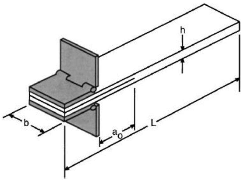 figure 1.13