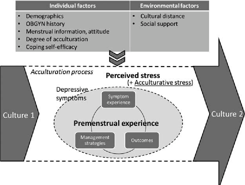 Stress and premenstrual symptoms among Korean women studying