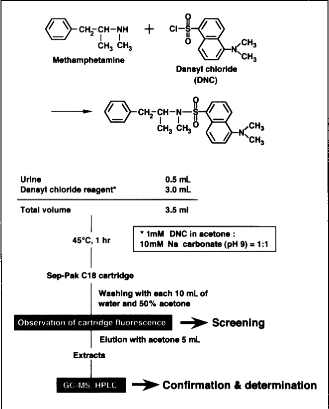 Figure 1 from Dansyl chloride derivatization of
