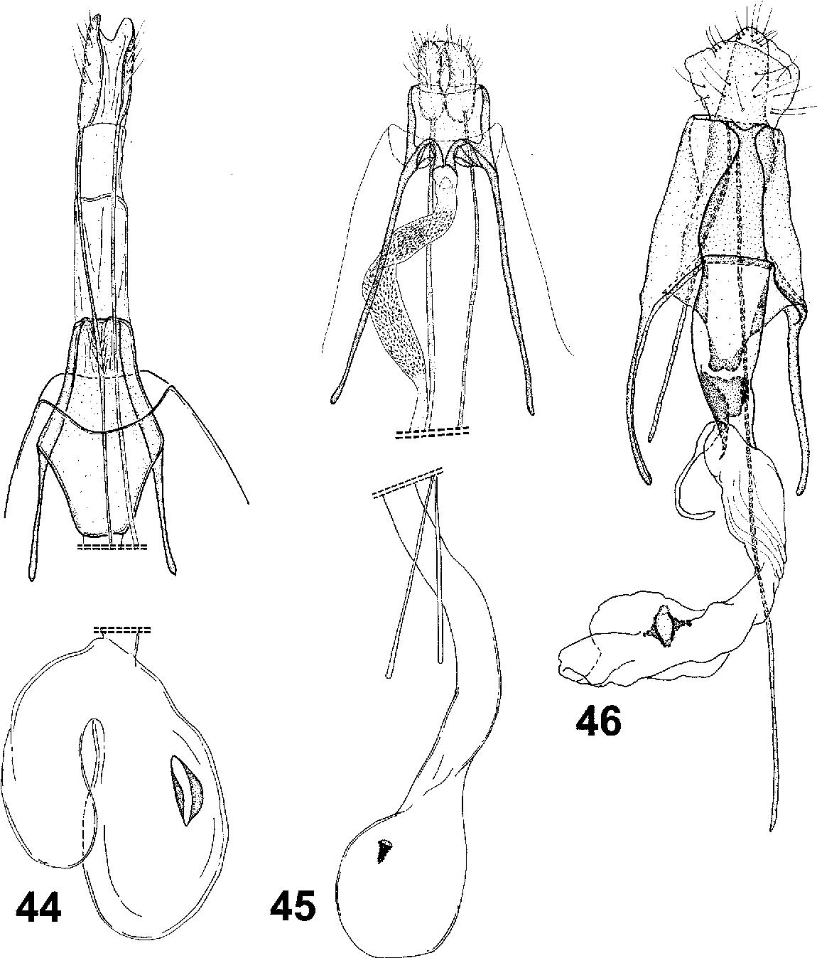 figure 44–46
