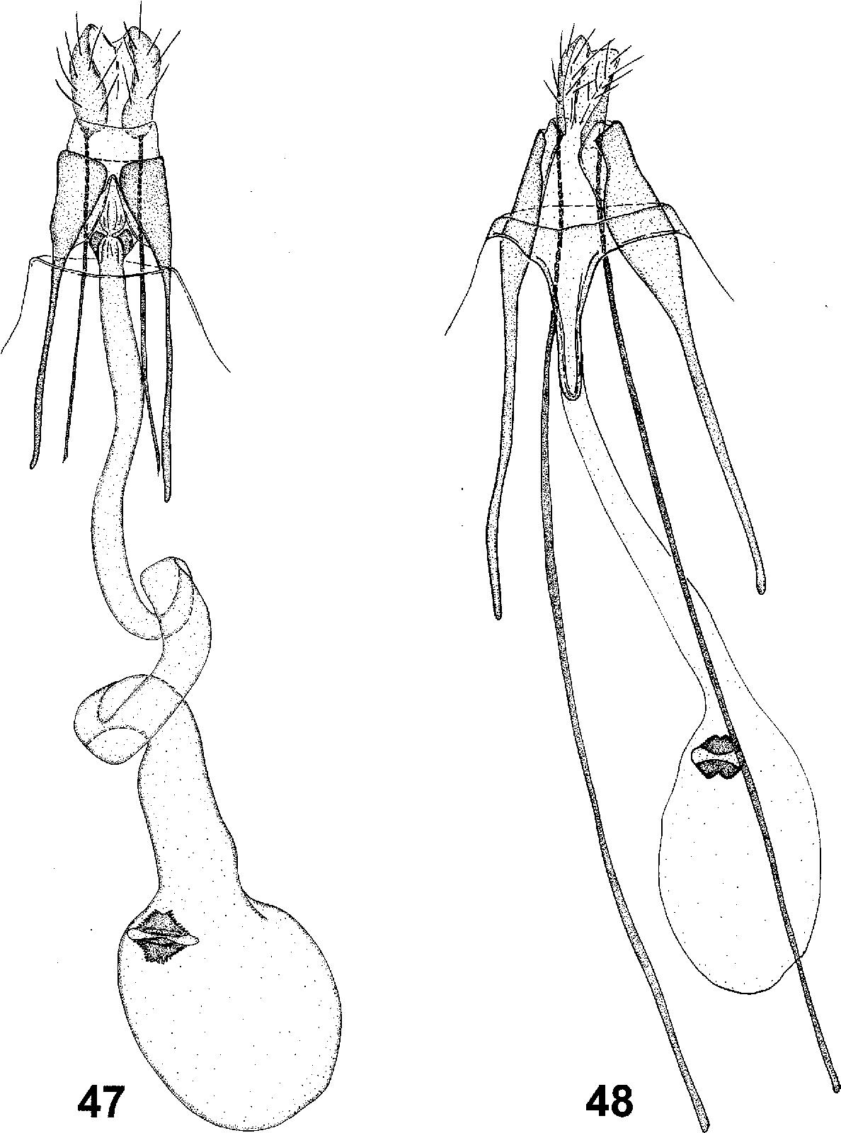 figure 47–48