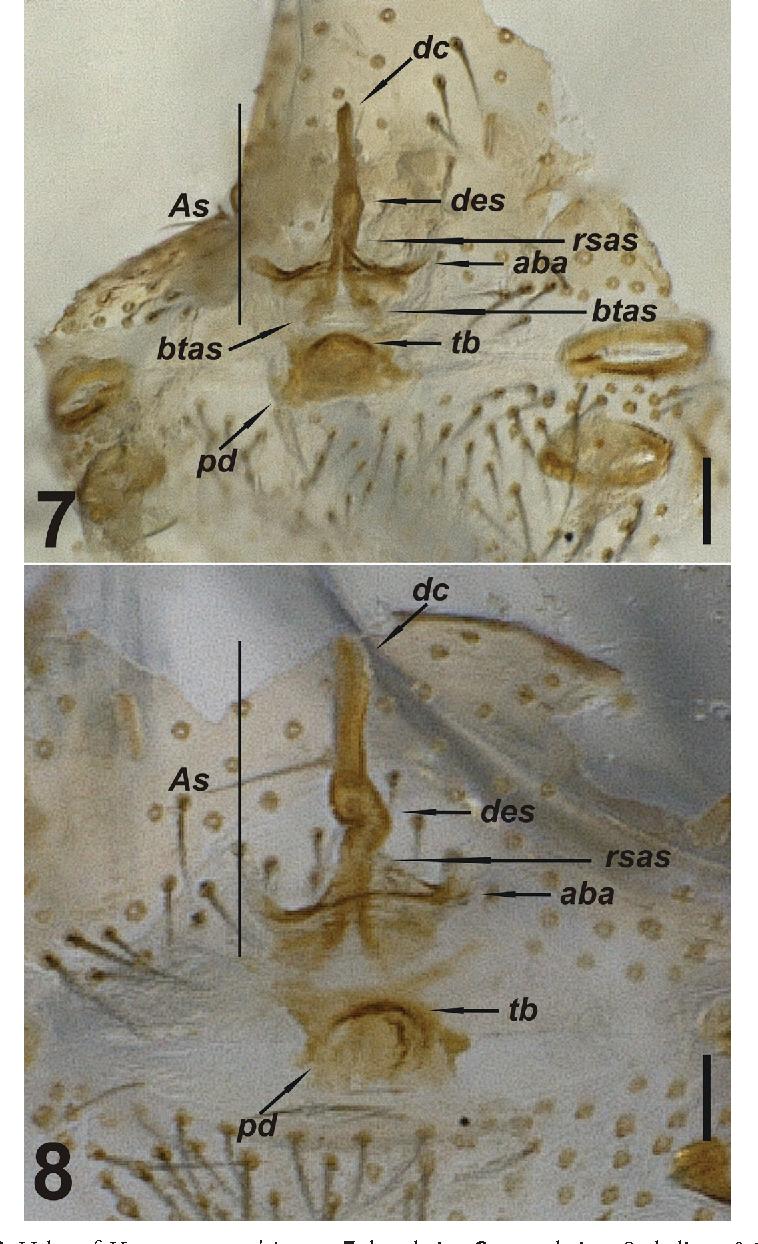 figure 7–8