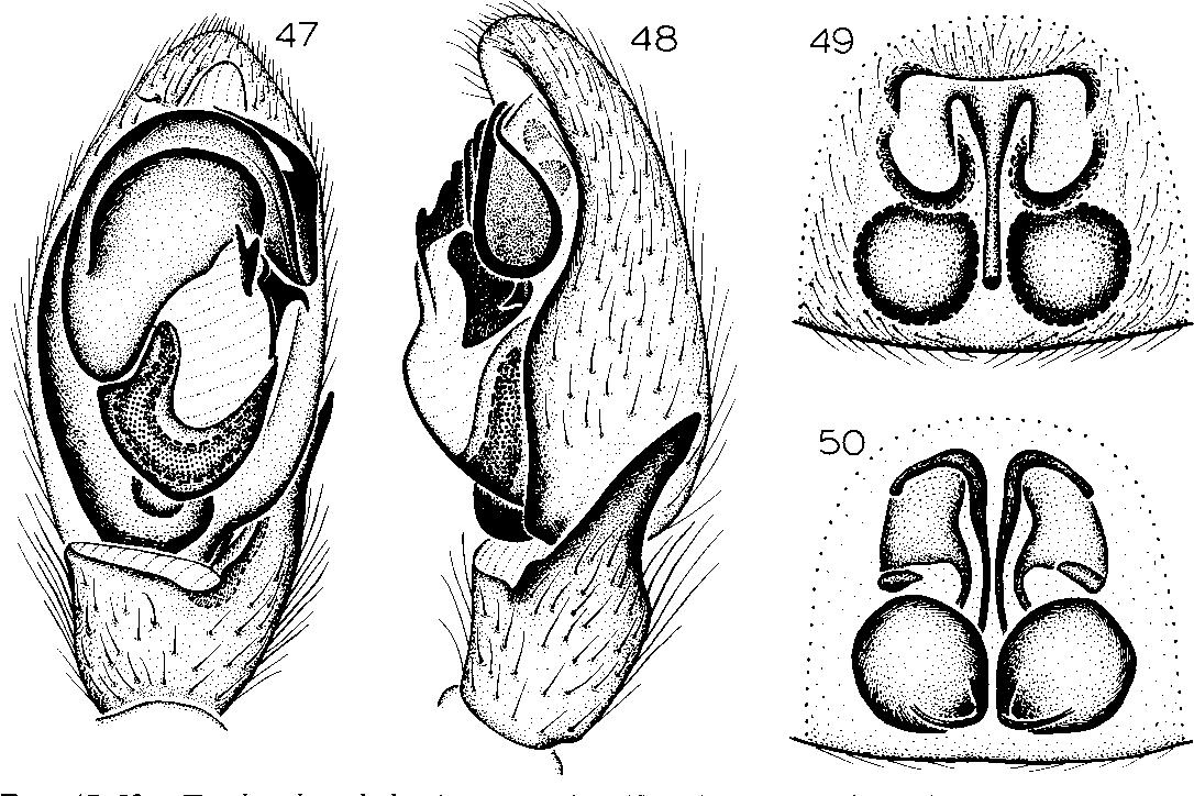 figure 47-50