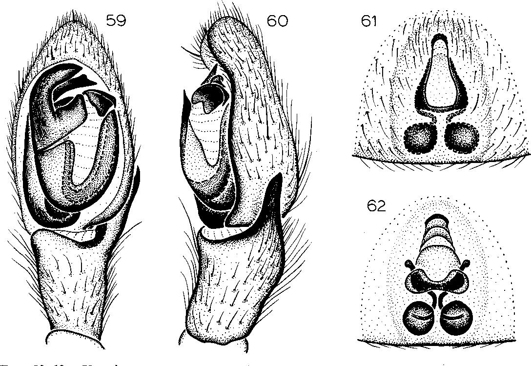 figure 59-62