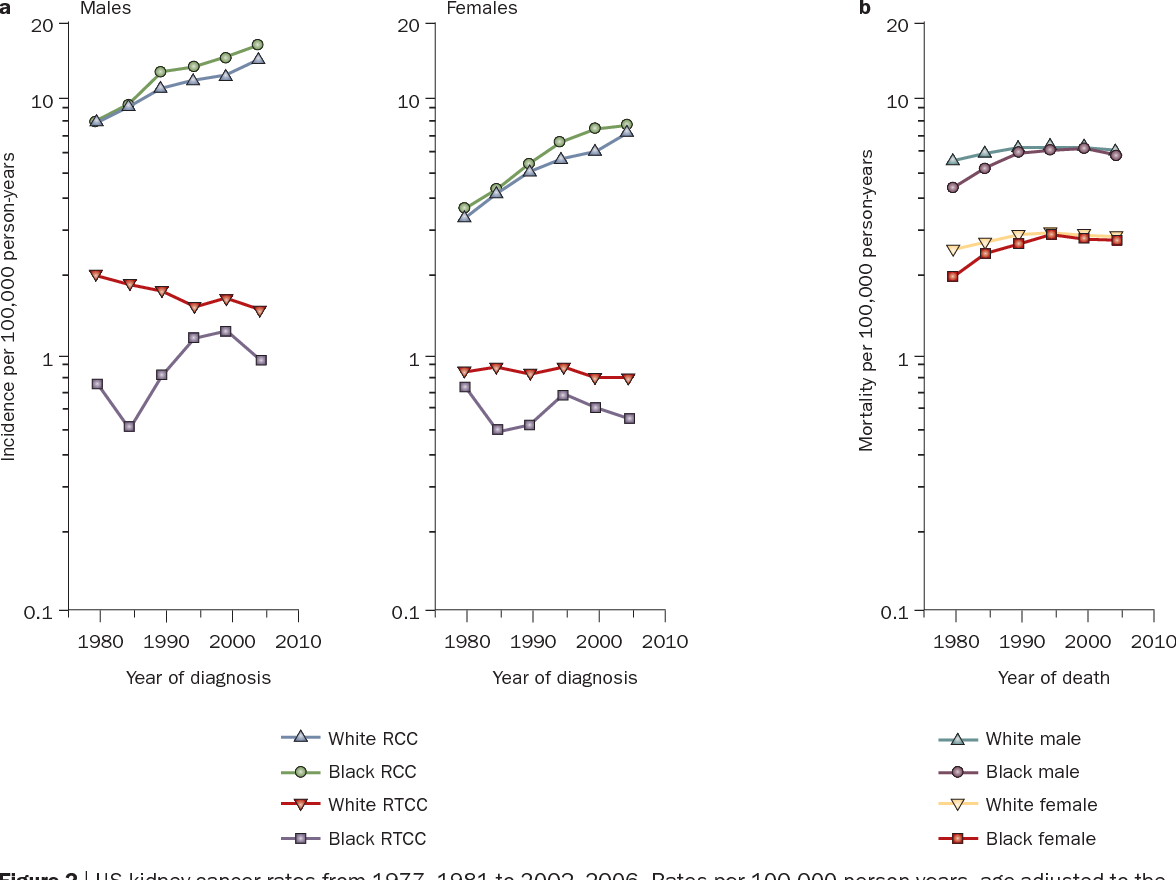 Figure 2 From Epidemiology And Risk Factors For Kidney Cancer Semantic Scholar