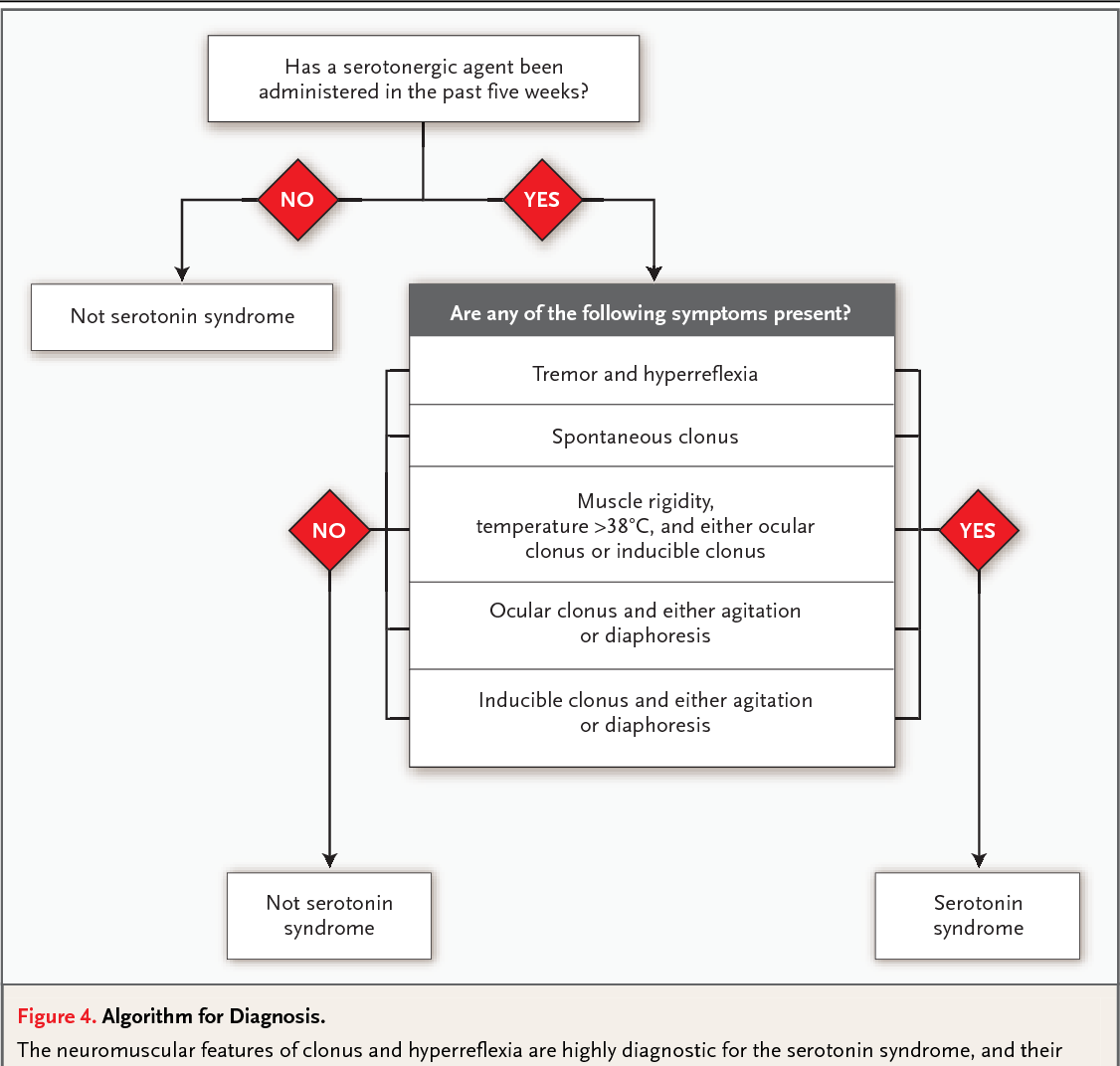 [PDF] The Serotonin Syndrome.