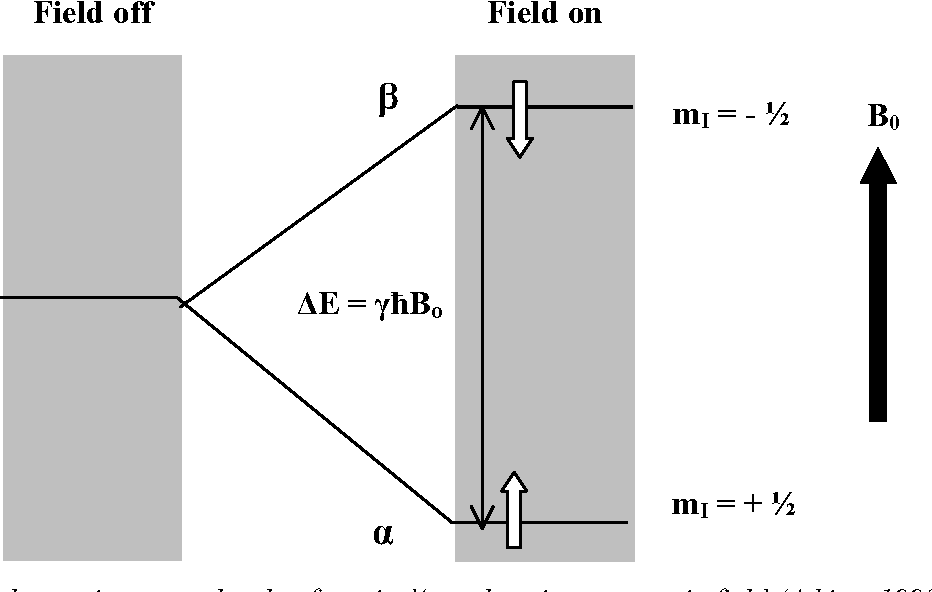 Figure 4 From Nuclear Magnetic Resonance Nmr Spectroscopy Basic