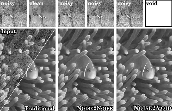 PDF] Noise2Void - Learning Denoising from Single Noisy