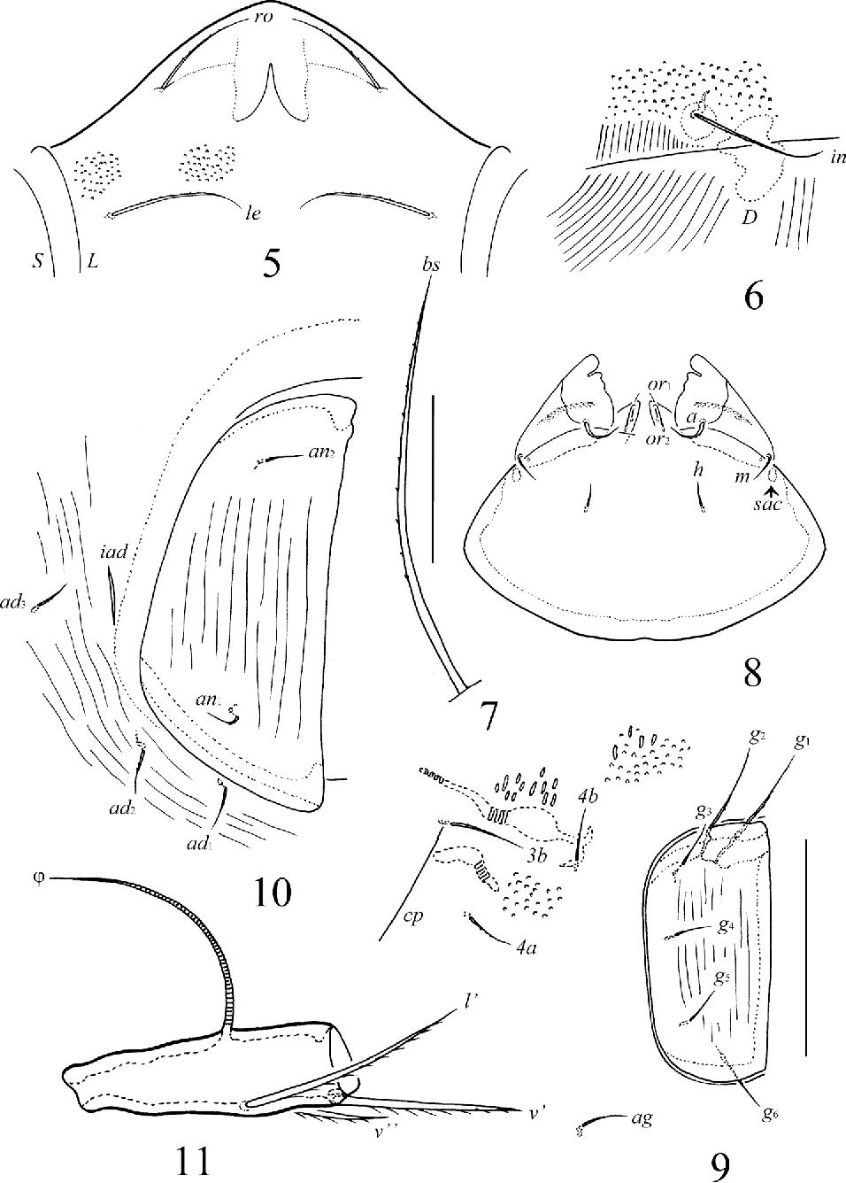 figure 5–11